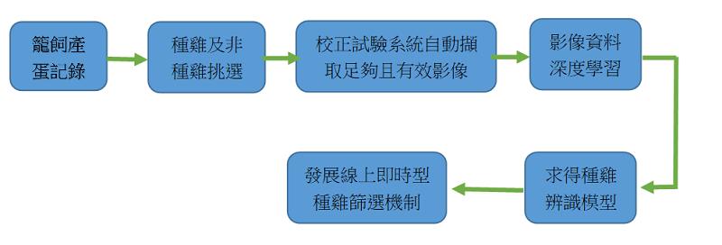 圖2、種雞篩選機制發展流程