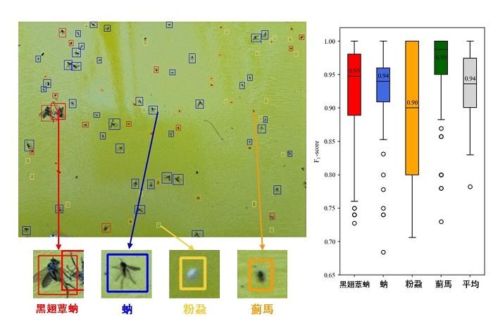 圖4、溫室害蟲辨識演算法辨識結果及準確率。
