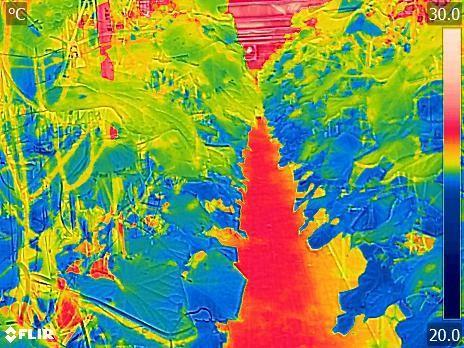 圖一、設施及小胡瓜植體之熱影像溫度分佈情形