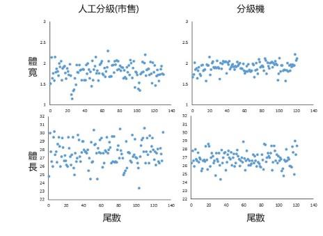 魚體(3號)體長與體寬量測,右圖為海上實測結果,標準差較市售(人工選別)減少60%,顯示選別較為精確